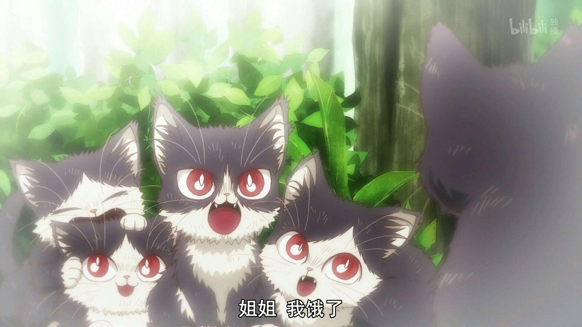 【动漫资源】同居人是猫