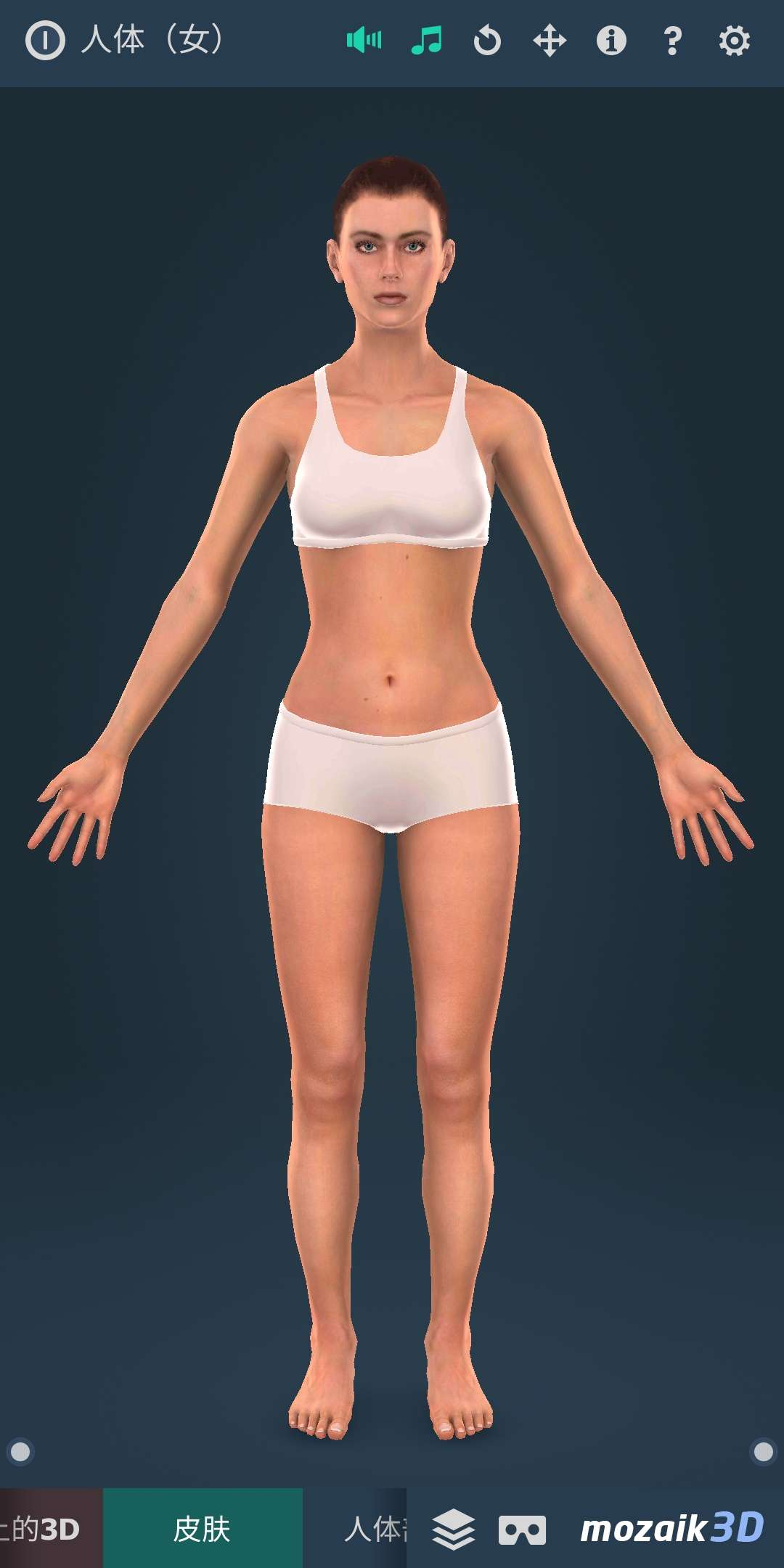 【分享】Human body (female)(人体3D女性)
